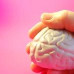 sous-lemprise-de-son-cerveau